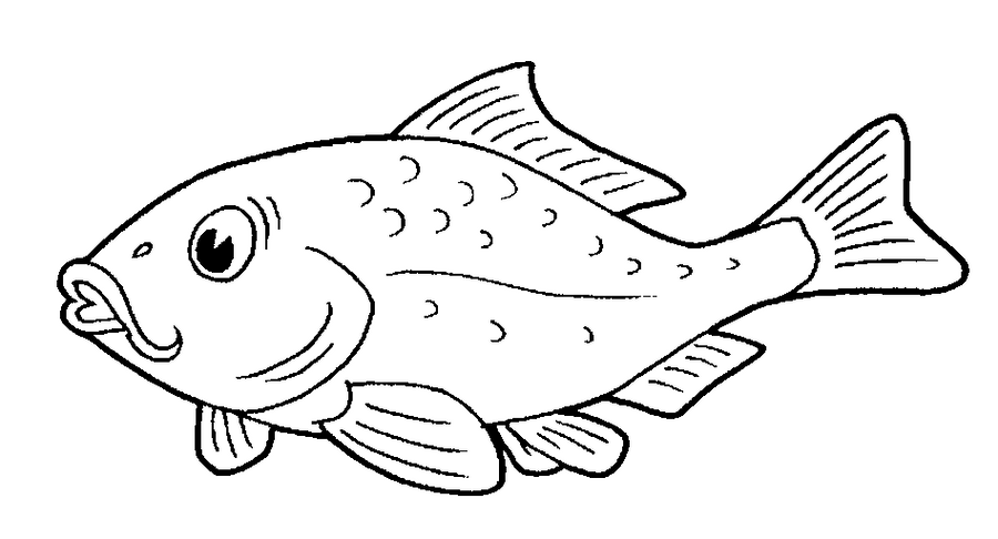 fish coloring pages games kids - photo#36