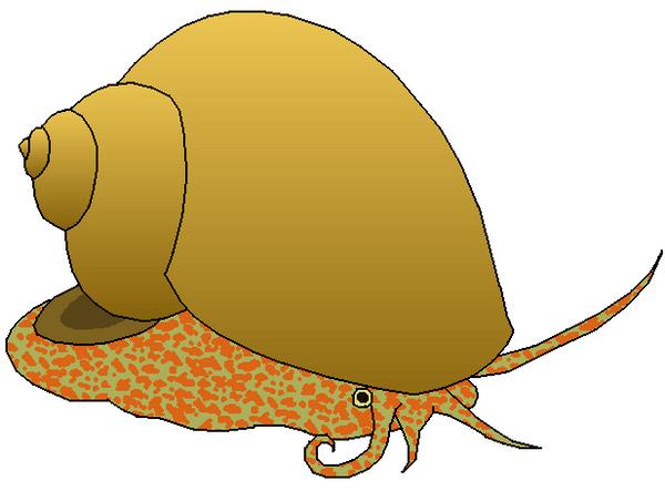 apple snail clipart by misterbug on deviantart rh deviantart com snail clip art images snail clipart