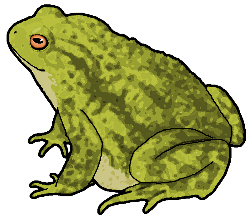 toad clipart by misterbug on deviantart Cute Green Frog frog and toad clipart black and white