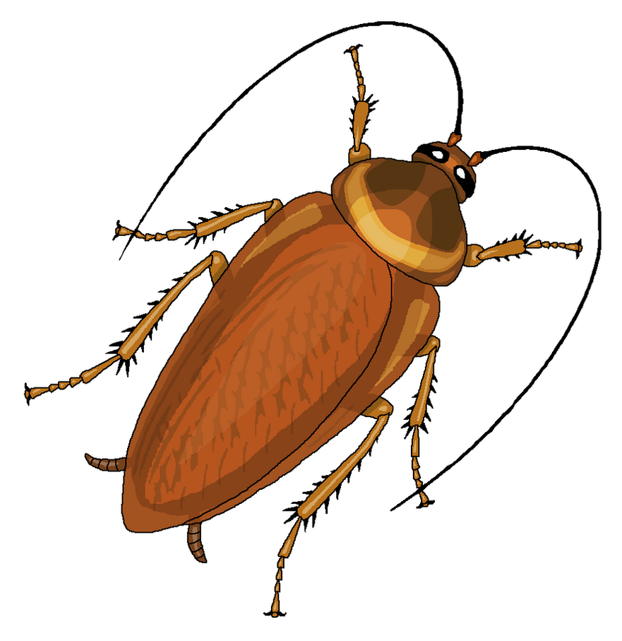 cockroach clipart by misterbug on deviantart rh deviantart com cockroach clipart free cartoon cockroach clipart