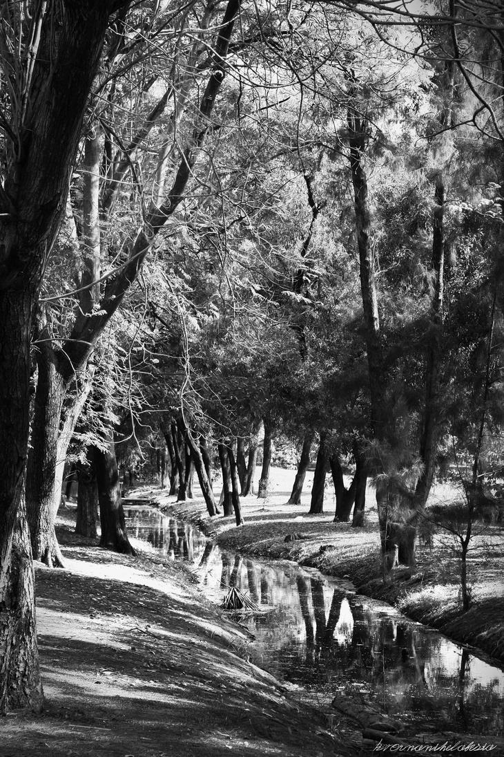 Park Stream by KvornanTheLafesta