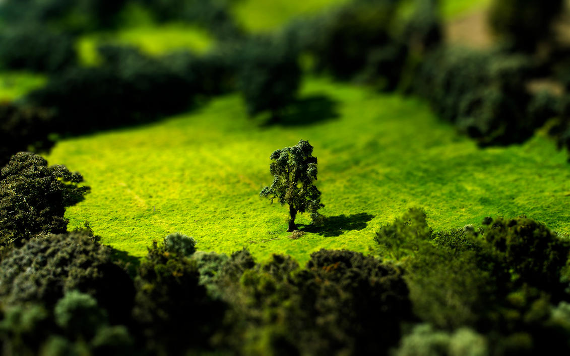 Tilt Shift Meadow by Lagnar2010