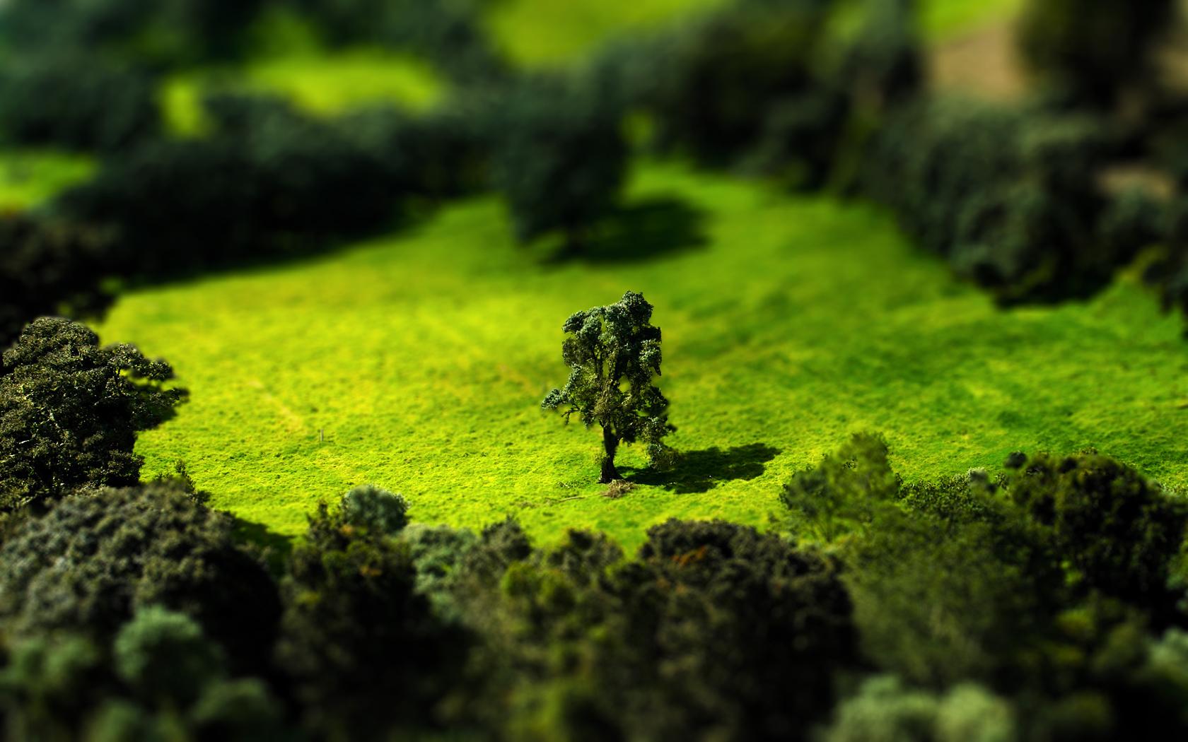 Tilt Shift Meadow by Lagnar2010