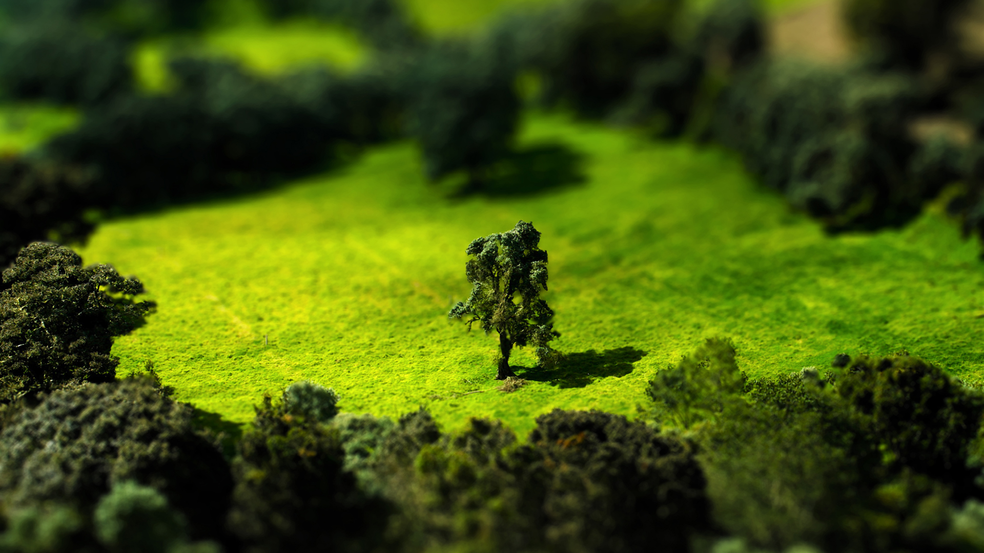 Tilt Shift Meadow 1920x1080 by Lagnar2010