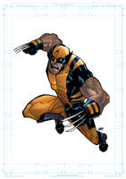 Wolverine Digital by SpideyCreed