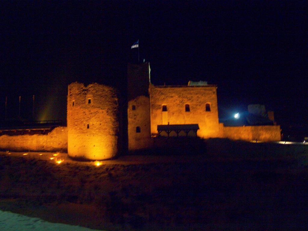 Rakvere castle in night by rihosk