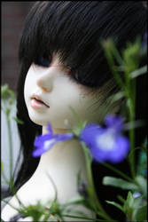 Violet Blue by Salthy