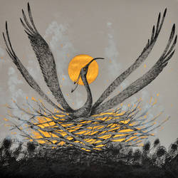 Rise of the Black Phoenix
