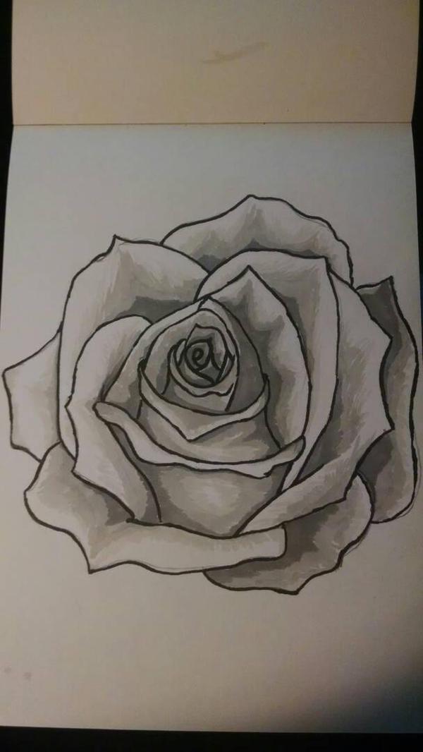 Rose by darkhearteddon250