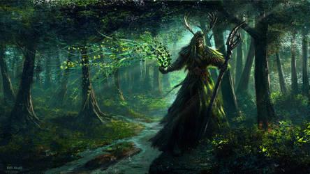 Druid by Edli