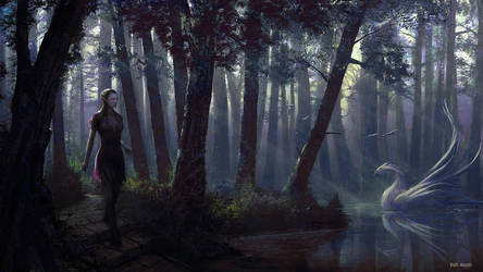Enchanted forest by Edli