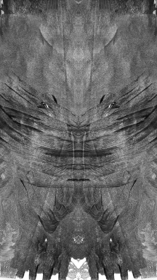 deerhead eagle by jasonaych