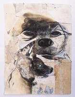 badgerbend by StefanThompson