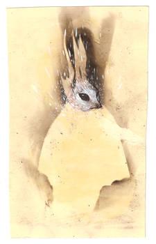bunnycoat