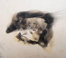 minirabbit by StefanThompson