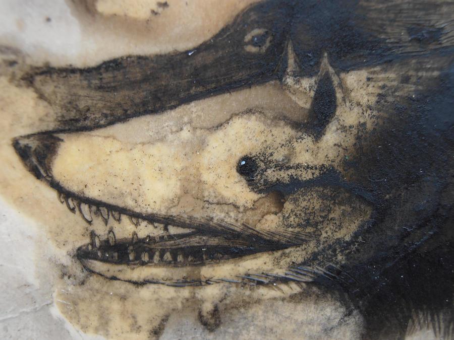 rabbithug detail by StefanThompson