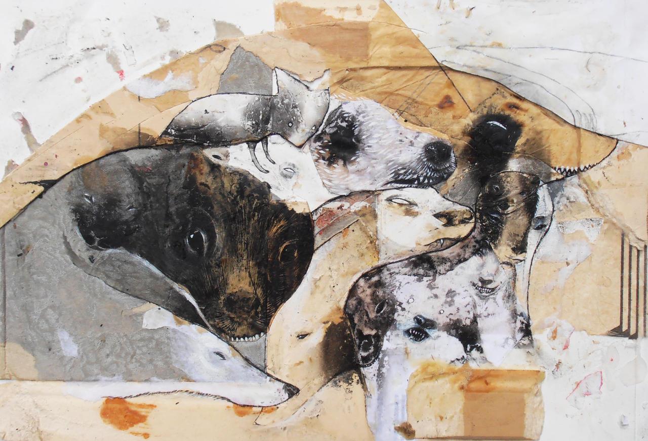 snouts by StefanThompson