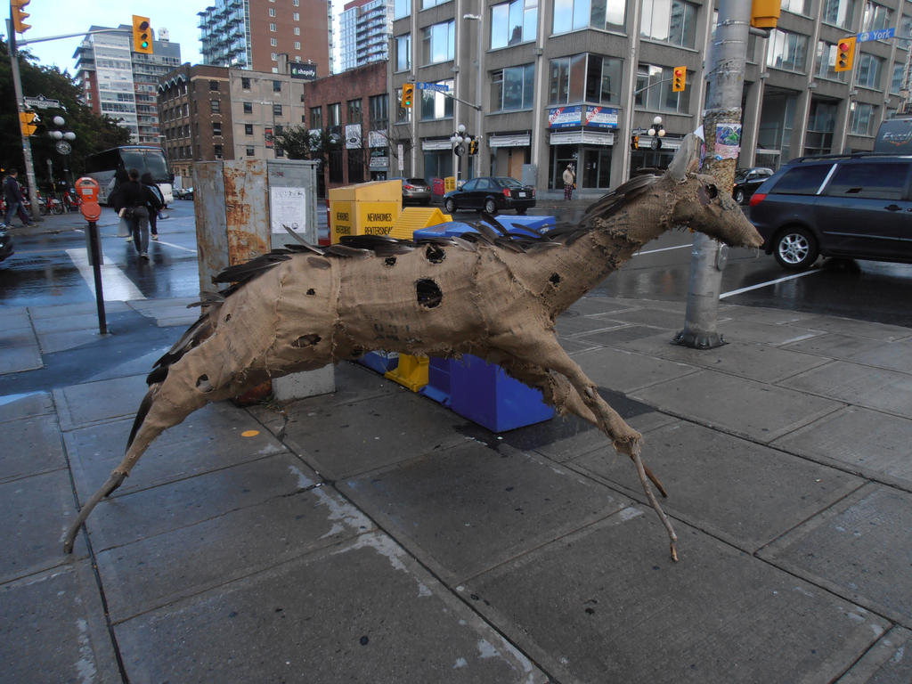 Deerhorse by StefanThompson