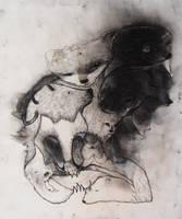 ravenshead by StefanThompson