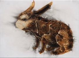 Rabbitrelations by StefanThompson