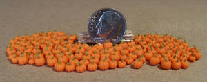 Micro Miniature Pumpkins 2014 - Orange