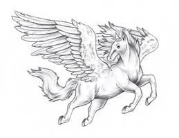 Pegasus Meeting Sketch