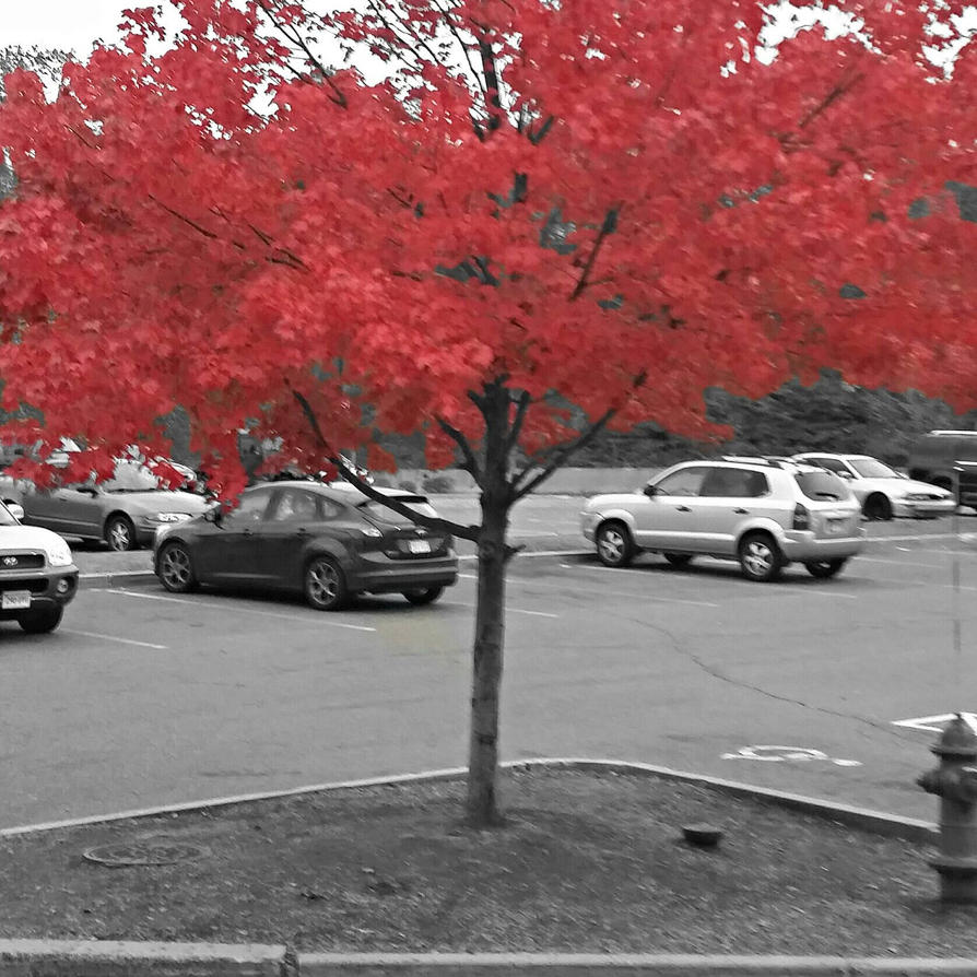Crimson by Anuksut