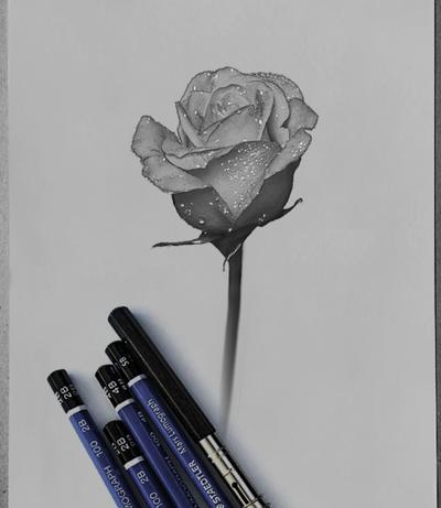 Flower by DAIGL
