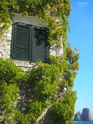 Window to Capri