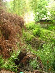 Landslide by Stoyansky