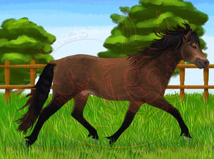 22. Frolicking horse