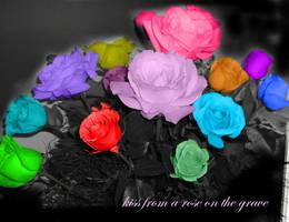 roses by caseylayne