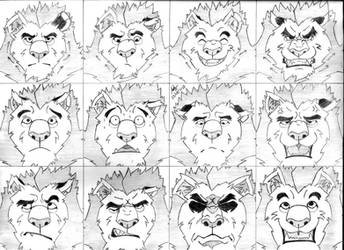 Practice of Expressions 01 - Kral by Mega-Charizar