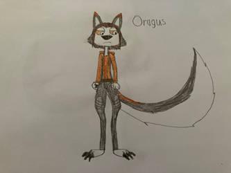 Oragus