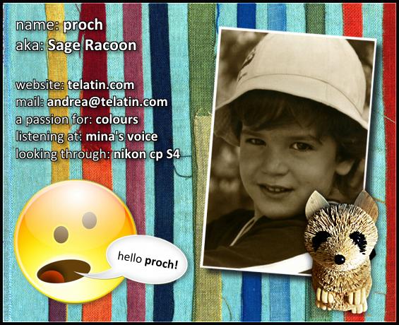 proch's Profile Picture