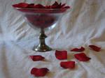 Rose Petals in a Bowl Stock 1