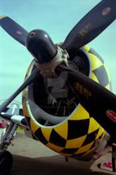 P-47 Thunderbolt Close Up