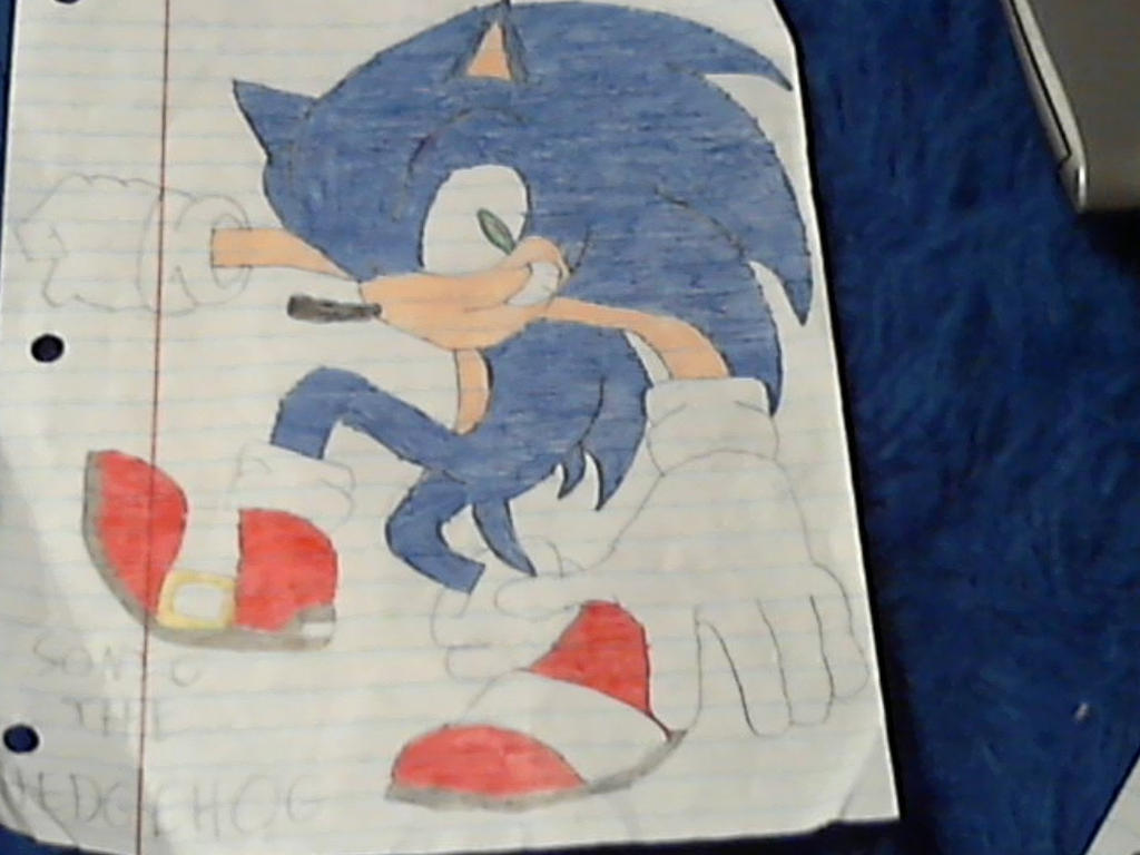 Sonic The Hedgehog by YakkoWarner20