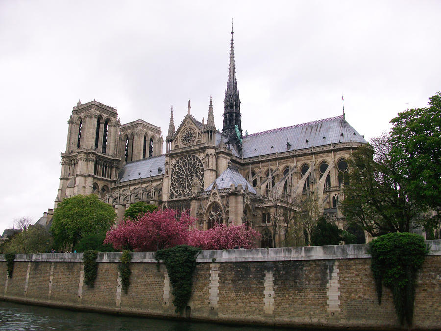 Notre Dame Cathedral by astateofconfusion