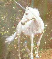 Unicorn (2013)
