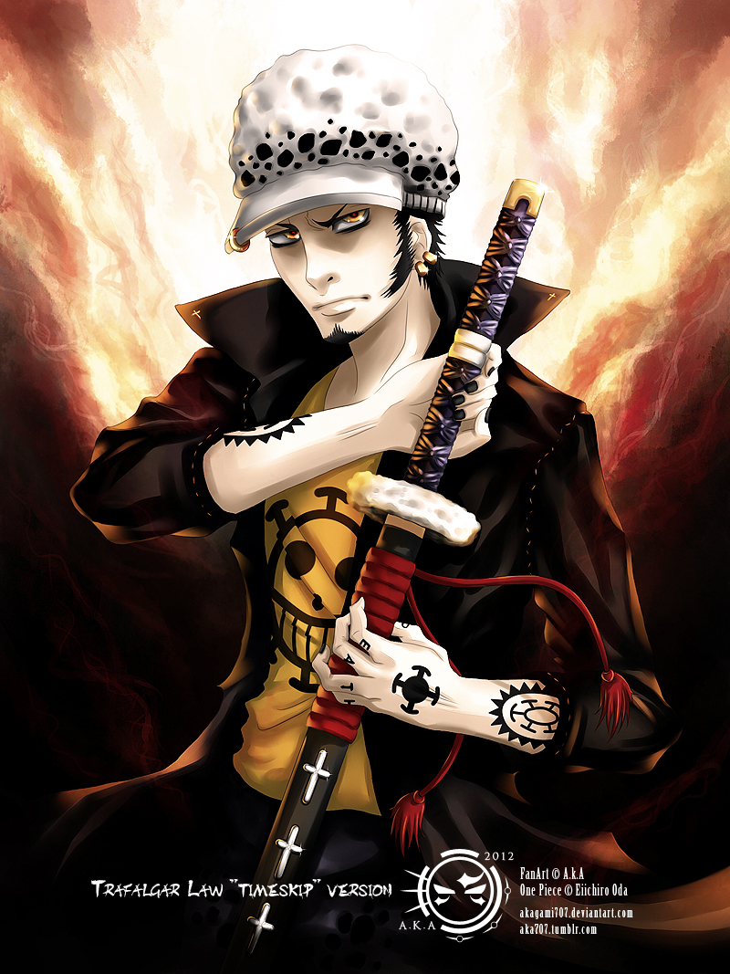 Trafalgar Law -Timeskip- by Akagami707 on DeviantArt