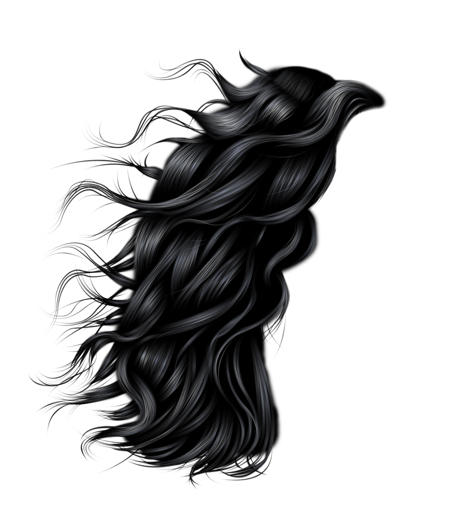 Hairstyle Png : windswept hair 3 by hellonlegs on DeviantArt