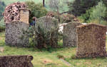 Old Grave Stones