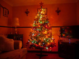 our christmas tree put  up 12/12 2012