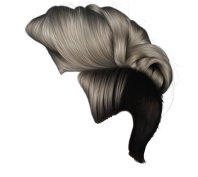 Elegant Mohawk