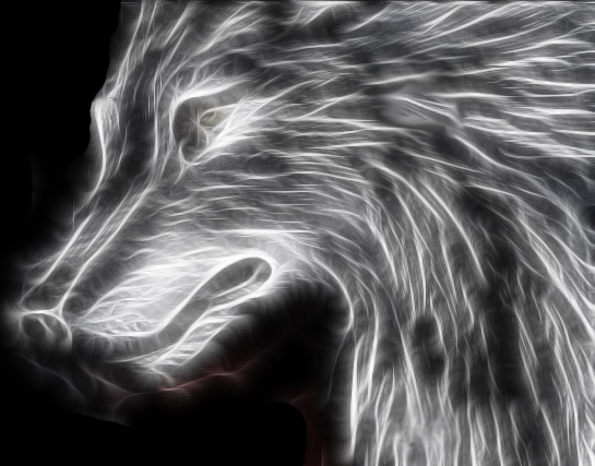 Fractal Wolf by Pattarchus