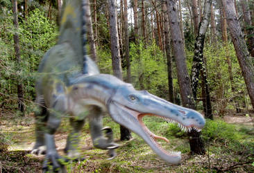 A wild Spinosaurus appeared