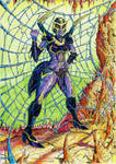 Blackarachnia's web - coloured