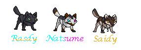 Rasdy,Natsume,Saidy by BloodRain14