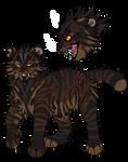 Tigerclaw/star Concept